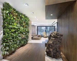 """""""Zelená architektura"""""""