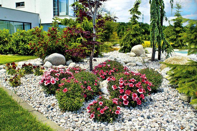 Letničkov é výsadby u bazénu oživují štěrkové plochy u bazénu. Letničky jsou důležitou součástí zahrady zejména v obdobích, kdy jsou ostatní rostliny nevýrazné – střed léta, pozdní podzim.